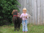 Paris and mini pony.
